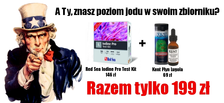 Red Sea Iodine Pro Test Kit + płyn Lugola