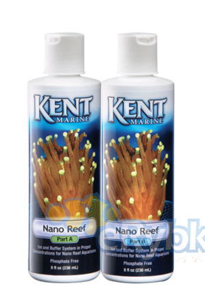 Kent Nano Reef A&B 2x 250 ml