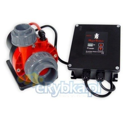 Red Dragon® 3 Speedy 80 Watt / 8,0m³