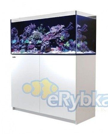 Red Sea Reefer 350 Biały
