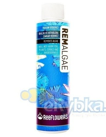 ReeFlowers RemAlgae 1000 ml