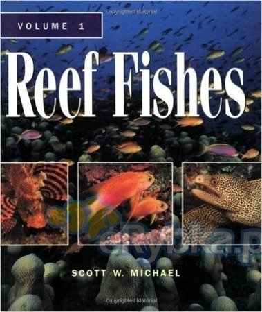 Reef Fishes Vol. 1