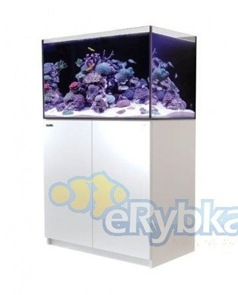 Red Sea Reefer 250 Biały